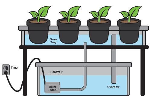 Ebb & Flow Diagram