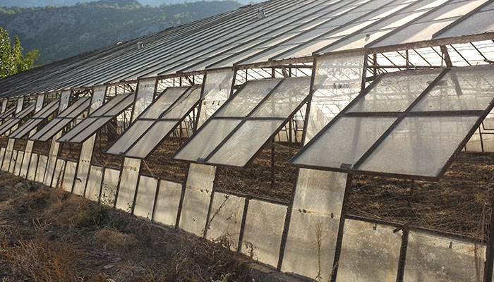 Controlling The Greenhouse Environment