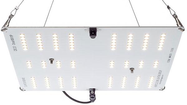 HLG 65 V2 LED Grow Light