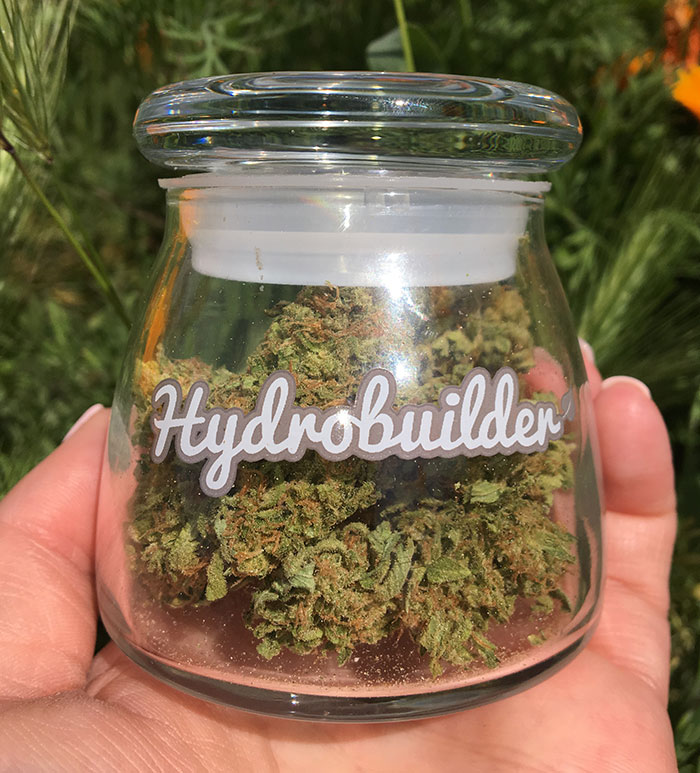 Drying and curing leads to higher potency, better flavor and aroma, and better smoke!