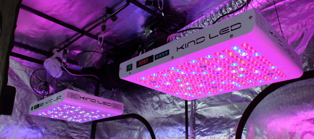 Do LED grow lights cost less to run?