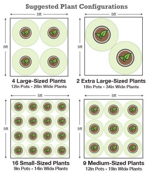 Plant Configurations  sc 1 st  Hydrobuilder.com & Grow Tents By Size And Brand - Hydrobuilder Learning Center