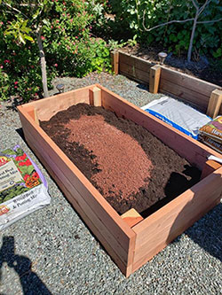 Why Grow In A Raised Garden Bed?