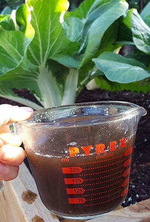 Compost Tea Concentration Rates & Storage Protocol