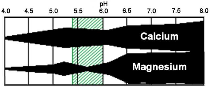 magnesium_deficiency_4 chart