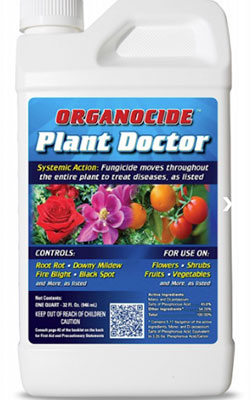 Best Fungicide For Root Rot: Organic Laboratories Organocide Plant Doctor