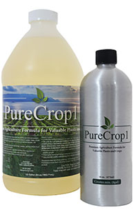 Best Fungicide For Bud Rot: PureCrop1 Fungicide