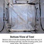tent-bottom-caption-2_34